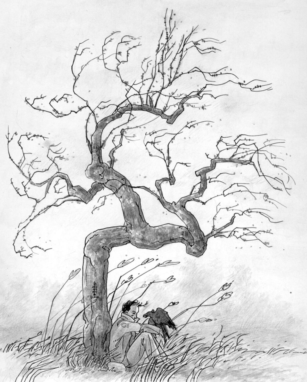 arbrecorbeau.jpg