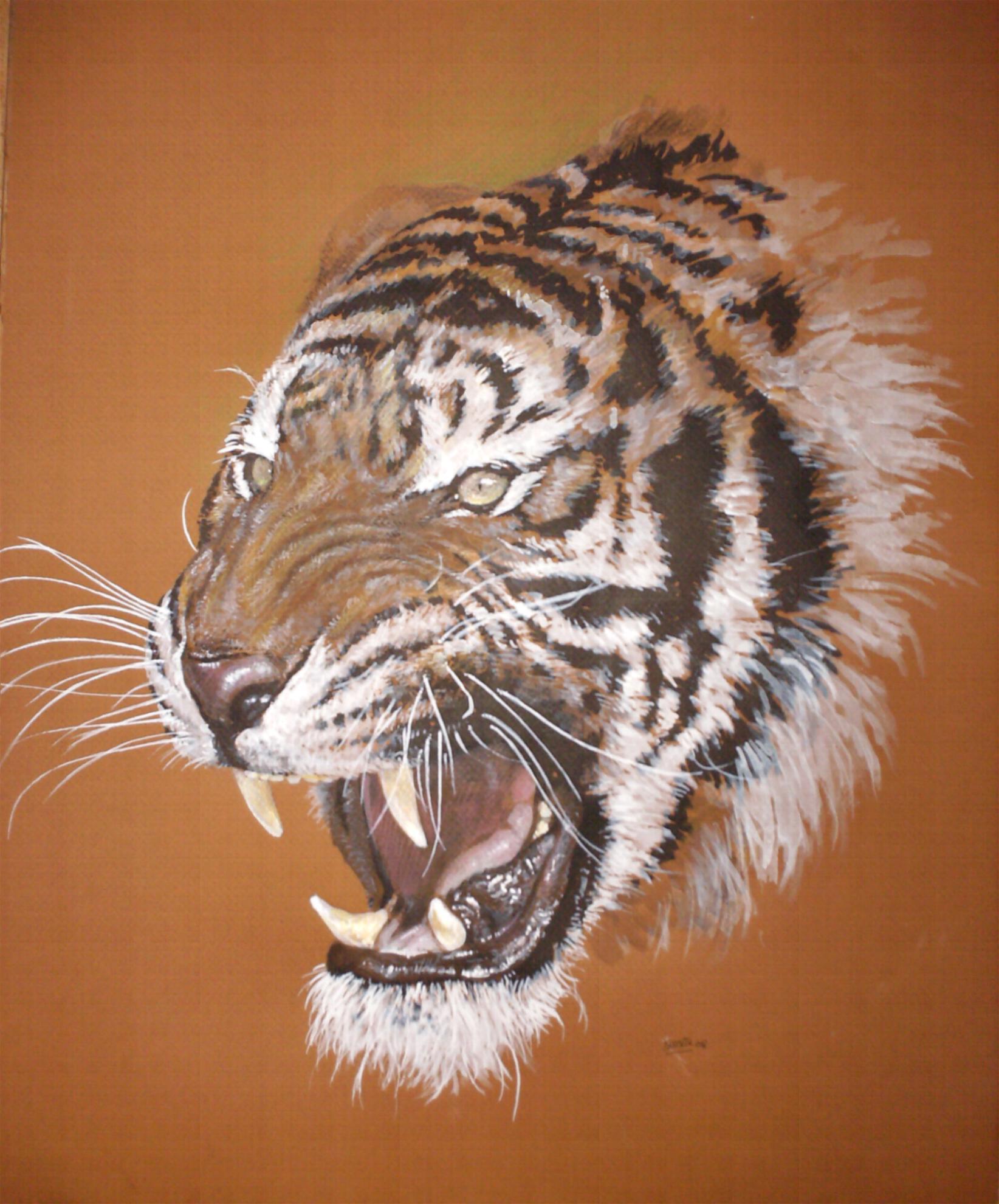 C novel dessins archive du blog tigre 2 - Image dessin tigre ...