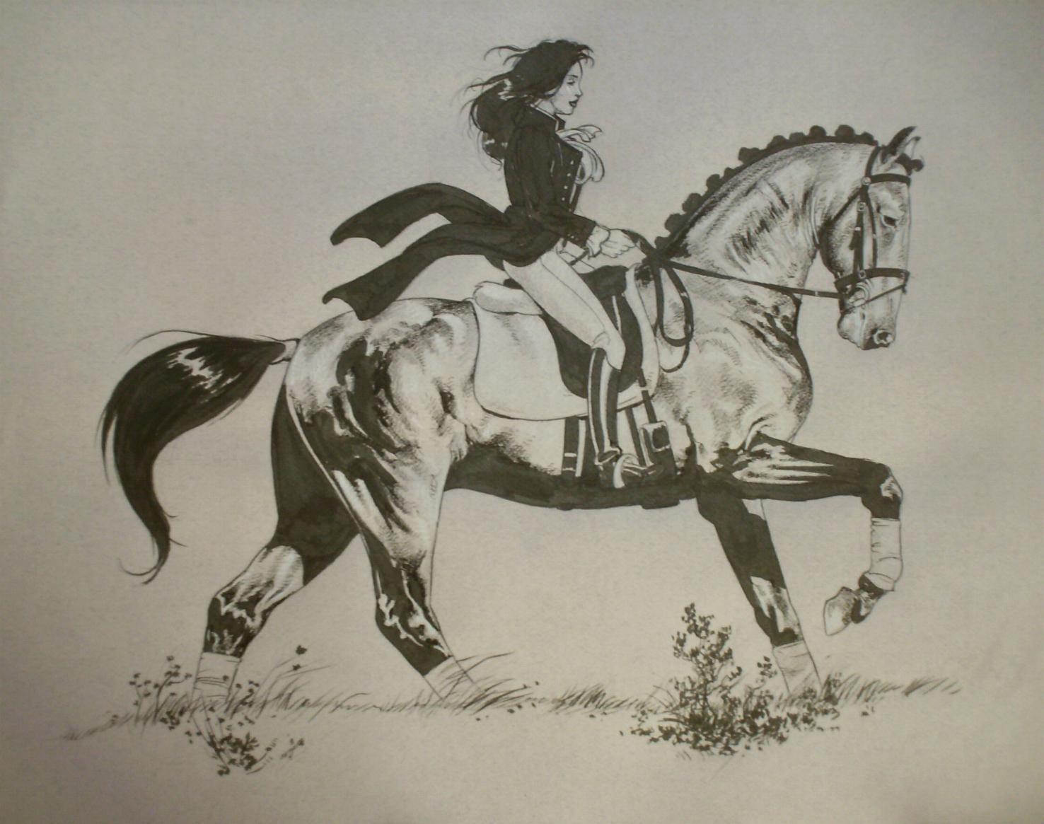 C novel dessins archive du blog cavali re - Dessin cavaliere ...