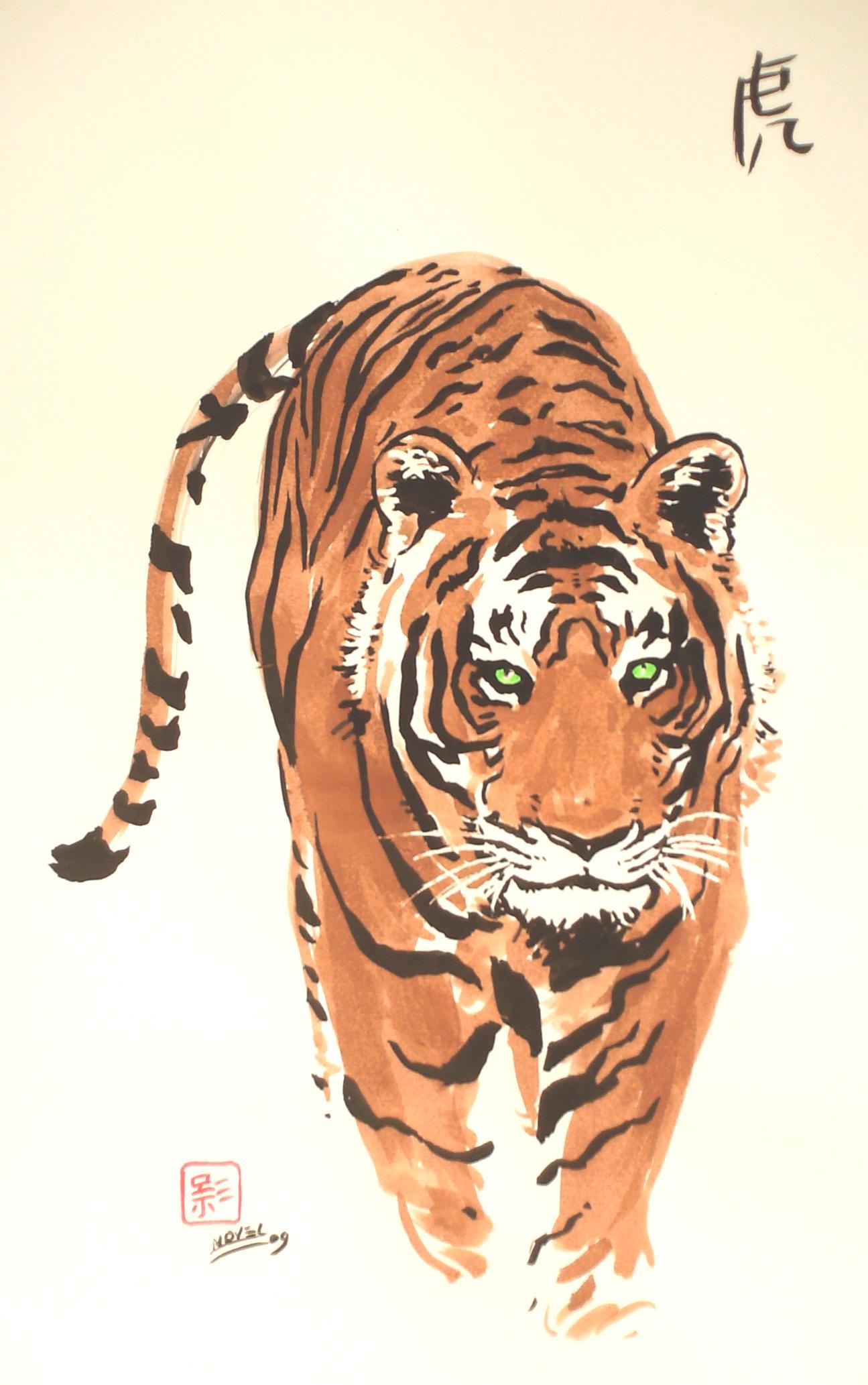C novel dessins animaux - Image dessin tigre ...