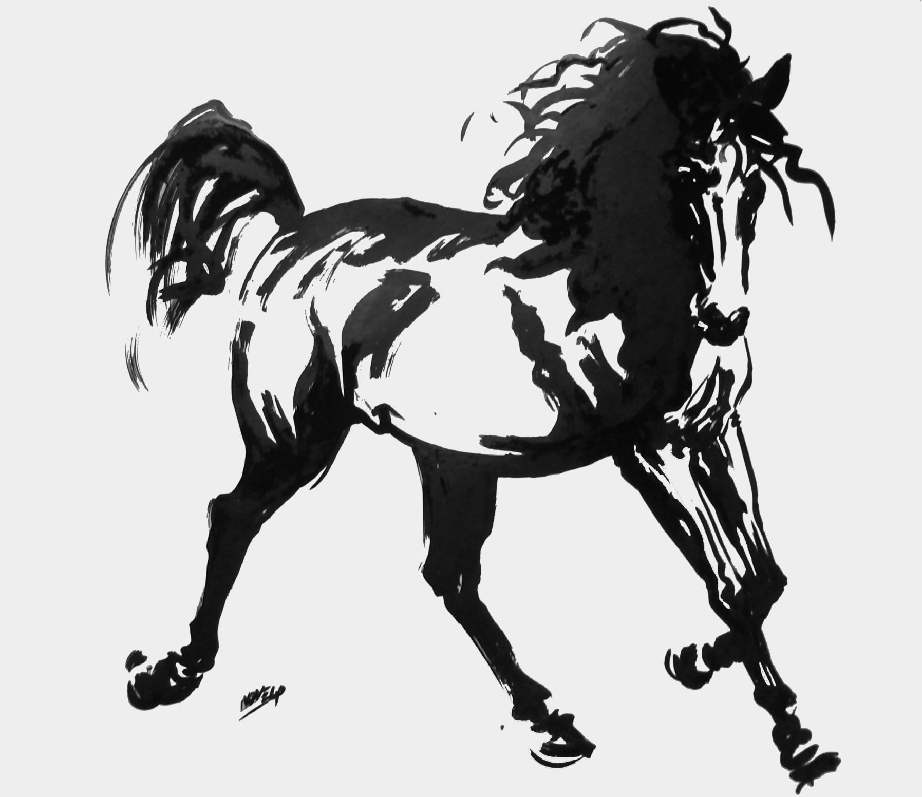 C novel dessins archive du blog cheval dans l ar ne - Dessins de chevaux facile ...