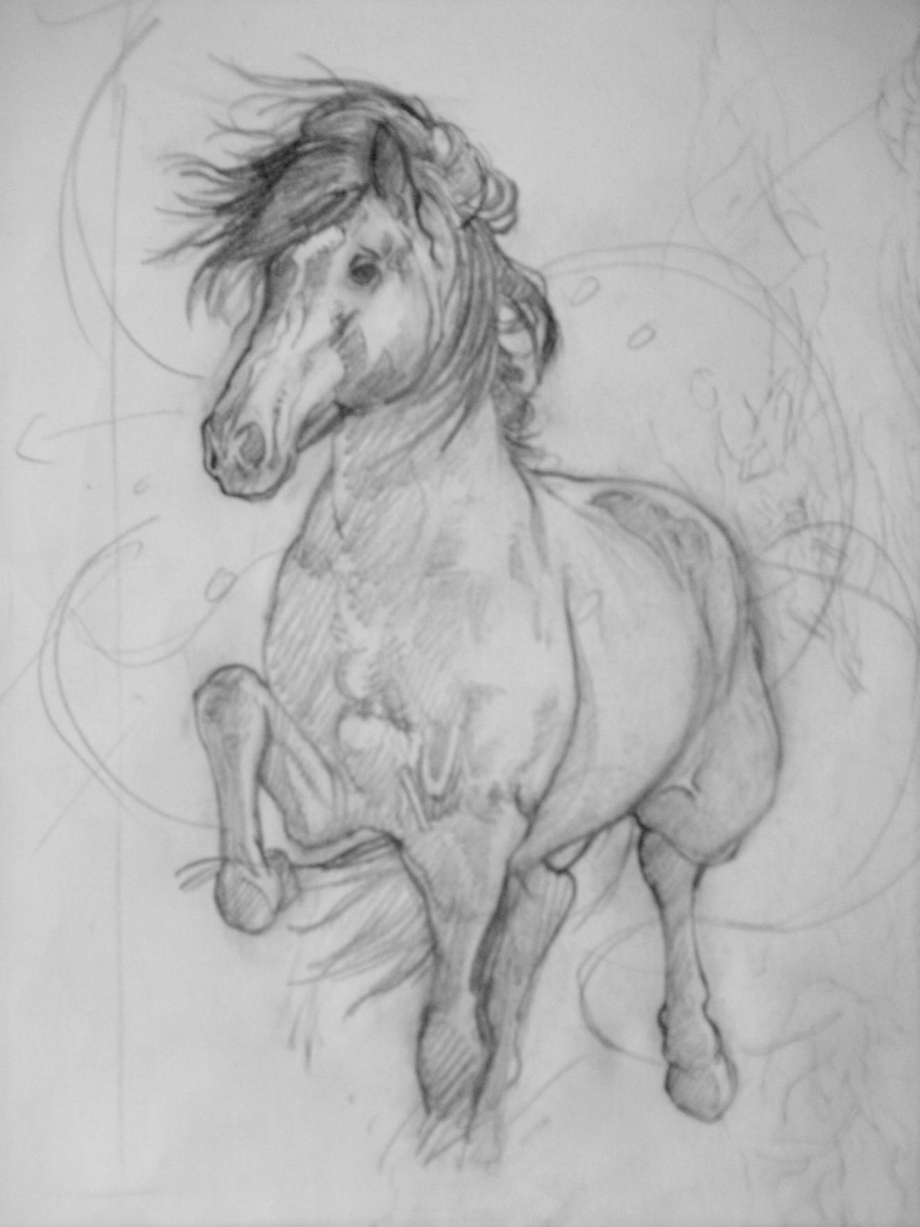 C novel dessins chevaux - Dessins de chevaux facile ...
