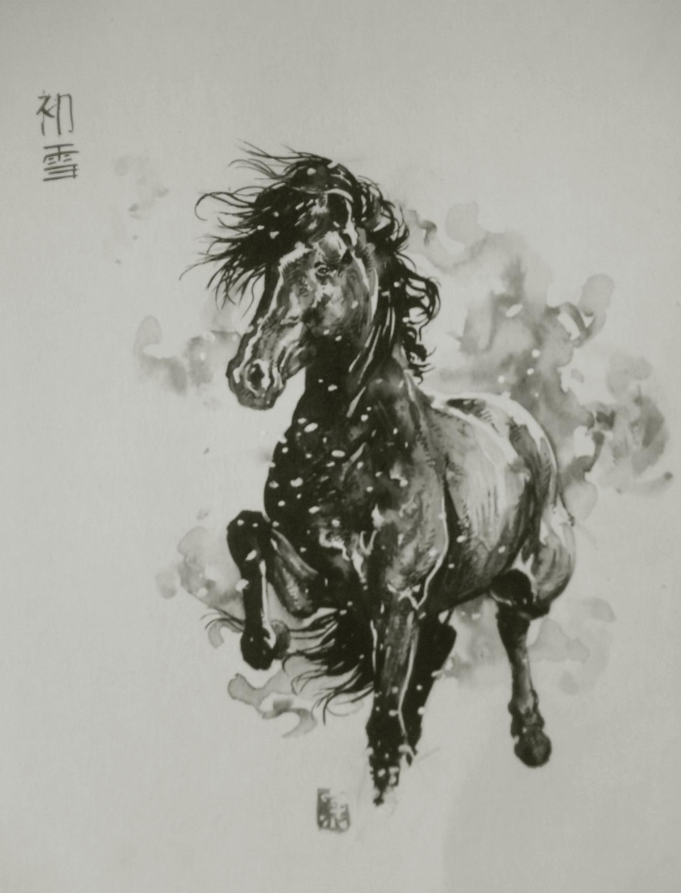 Dessins en noir et blanc encre de chine c et - Dessin noir et blanc animaux ...