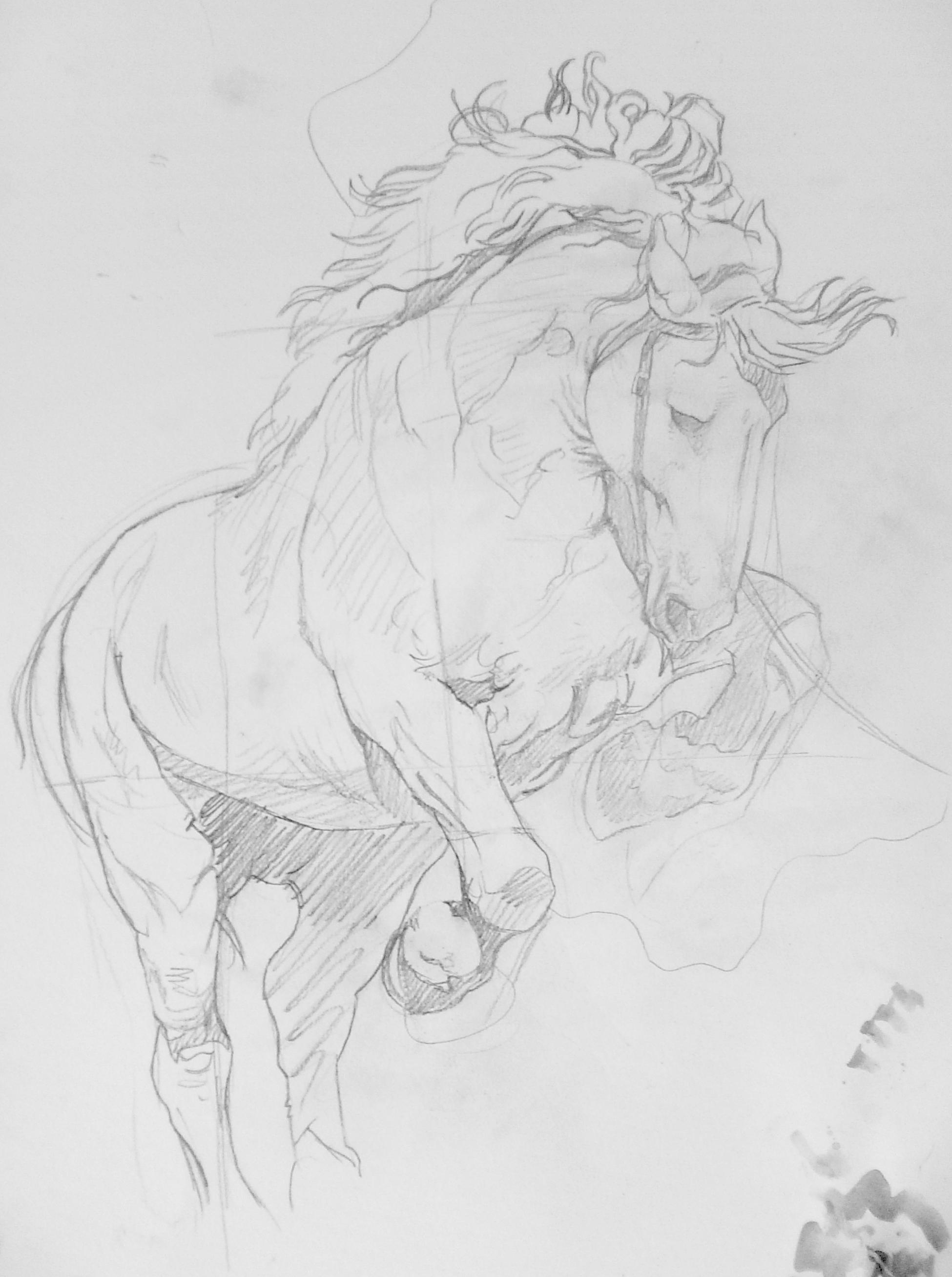 C novel dessins chevaux - Dessin facile de cheval ...