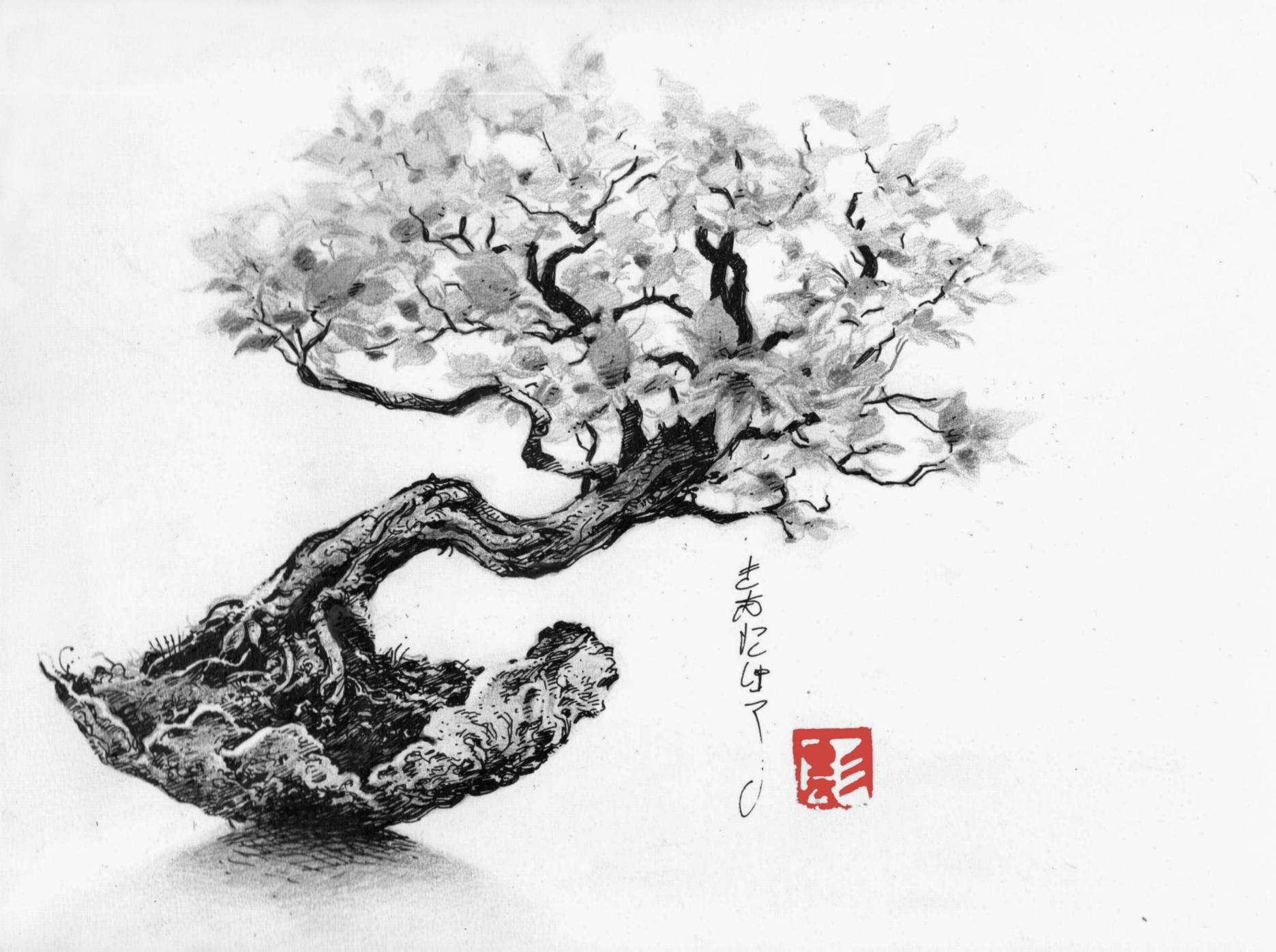 C novel dessins fleurs et arbres - Dessin arbre japonais ...