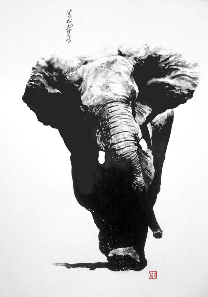 Charge d'un vieil eléphant dans animaux HPIM0842-718x1024