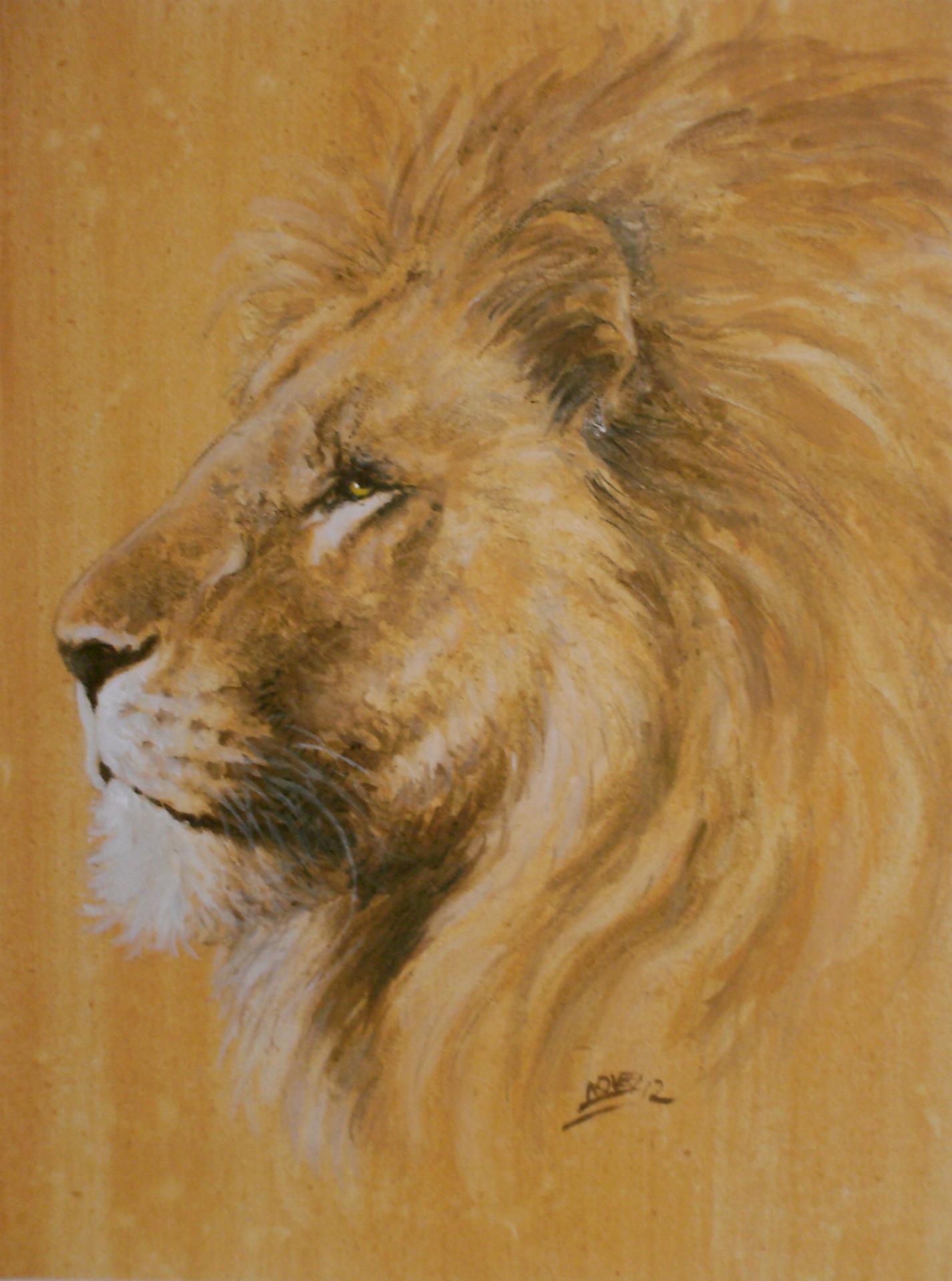 Profil De Lion C Novel Dessins