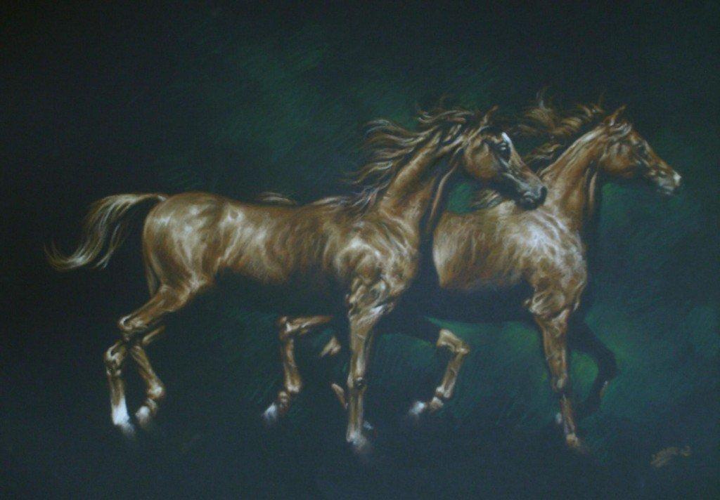 Couple de chevaux 2 dans chevaux hpim0229a-1024x712