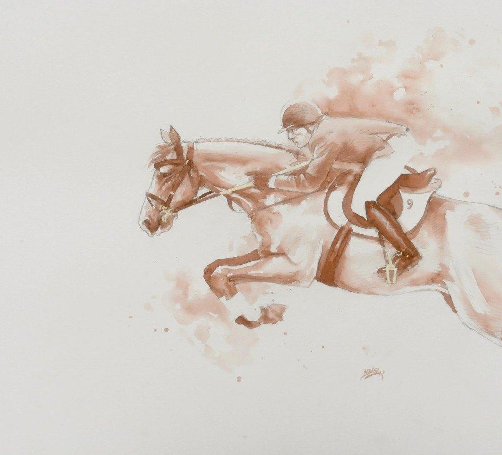 Jumping dans chevaux p5180091-1024x927