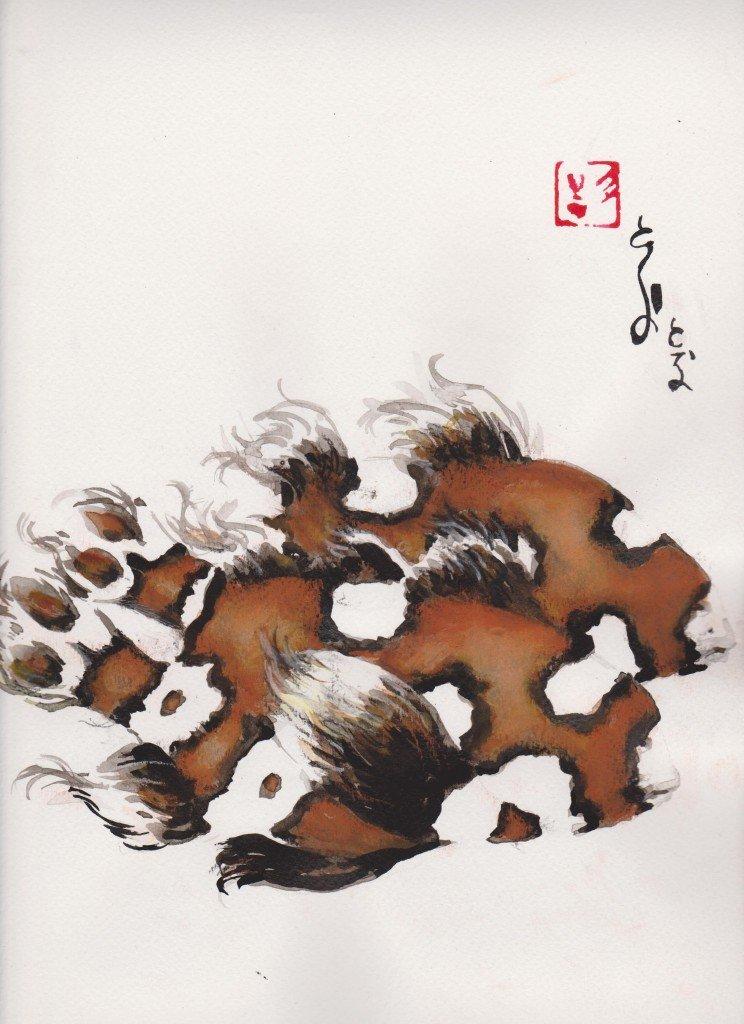 Poissons arlequins dans animaux d001-744x1024