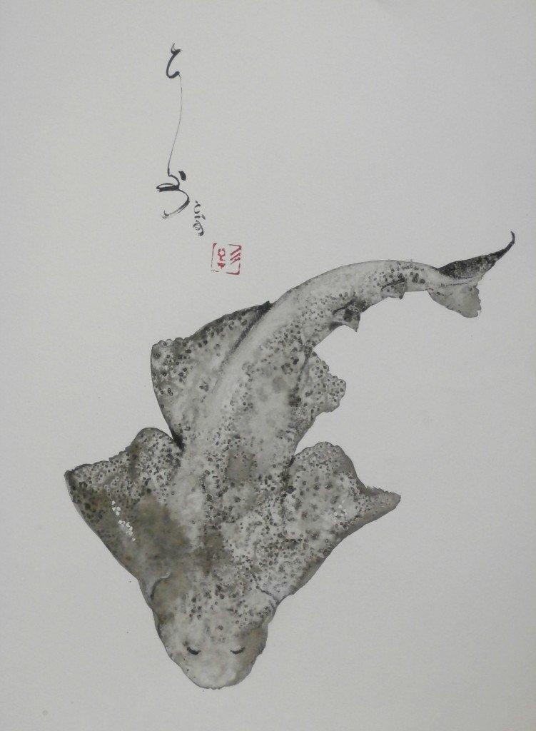 Ange de mer dans animaux p9110065-751x1024