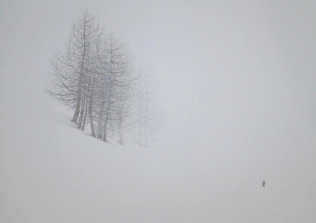 Into the white dans Paysage p9180071-1024x723